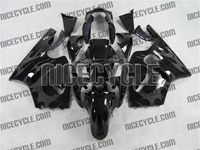 Kawasaki ZX12R Tribal Silver Fairings