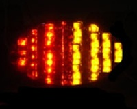 Buell Motorcycle Tail Light